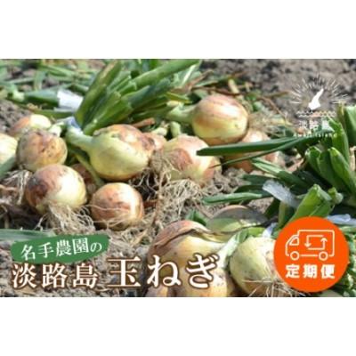 an03010 【定期便】名手農園の淡路島特産玉ねぎ10kgの12ヶ月コース