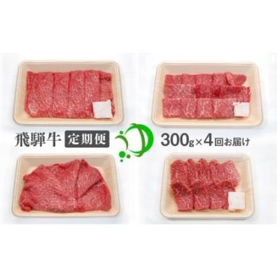 《定期便》飛騨牛 4回お届け 4ヶ月 焼肉 すき焼き しゃぶしゃぶ ミニステーキ 300g 5等級[Q602]