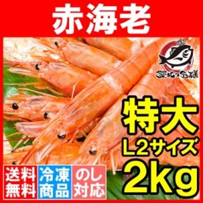 送料無料 赤海老 赤えび 2kg 特大 L2 30~60尾 業務用 1箱 お刺身用 ぼたん海老を超える希少な超特大!大きくプリプリの赤海老は甘みが違