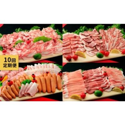 【10回定期便】ナルちゃんファーム 豚肉 食べ比べコース①