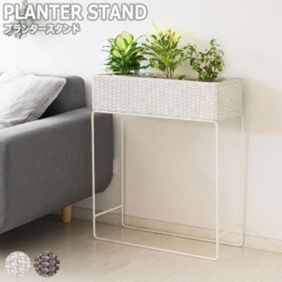 Grand グラン ラタンプランタースタンド 幅60cm (プランター 植物 グリーン 緑 造花 ボタニカル アジアン リゾート ラタン インテリア