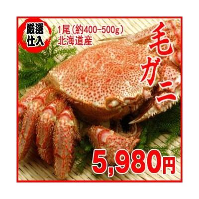 【厳選仕入】冷凍 毛ガニ 1尾(約400-500g)蟹カニ 北海道産