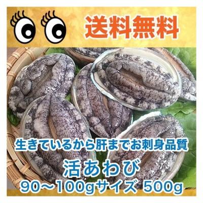 生きているから肝までお刺身品質 活あわび 90〜100gサイズ 500g