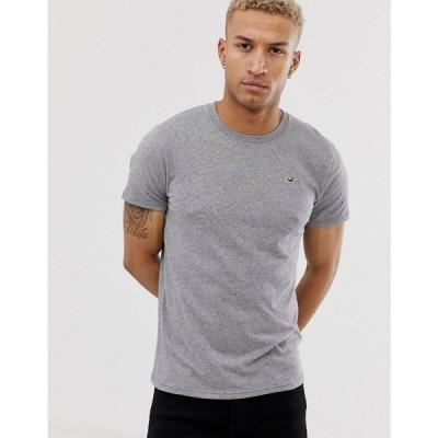 ホリスター Hollister メンズ Tシャツ トップス crew neck seagull logo t-shirt in grey Grey