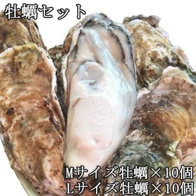 殻つき生牡蠣 Mサイズ×10個 Lサイズ×10個セット 北海道釧路町 仙鳳趾産  北の味倶楽部 代引き不可