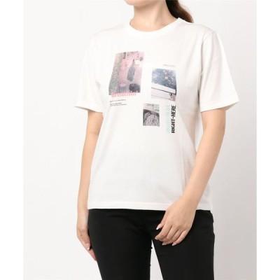 tシャツ Tシャツ RANDOM PHOTO TSJ