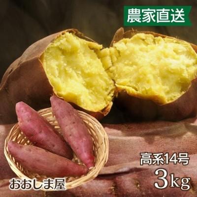 さつまいも 高系 3kg 送料無料 熊本産 生芋 さつま芋 唐芋 からいも <11月下旬より出荷予定> 大嶌屋(おおしまや)