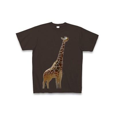 キリン Tシャツ Pure Color Print(チョコレート)