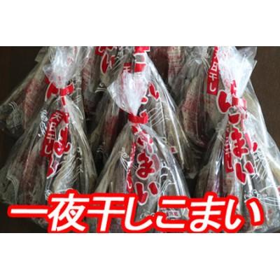 【北海道根室産】一夜干しこまい200g×10袋 A-70012