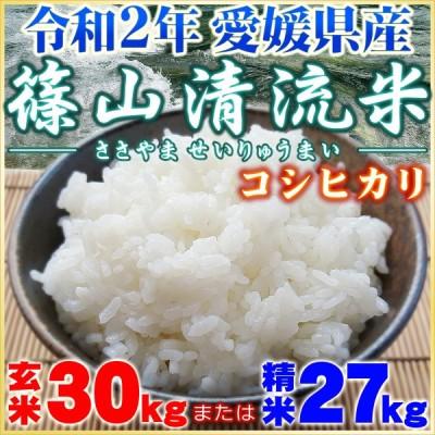 篠山清流米 コシヒカリ 玄米 30kg または 精米 27kg 米穀年度 令和2年 愛媛産 ささやま せいりゅう まい こしひかり 玄米 30kg または 精米 27kg 単一原料米