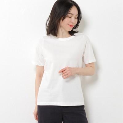 抗菌防臭加工オーガニックコットンTシャツ オフホワイト M L LL