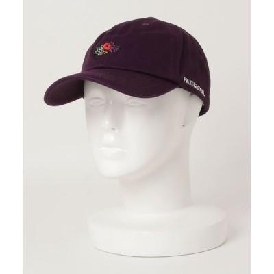 ALWAYS GOOD TIME NEW BASIC STORE / 【FRUIT OF THE LOOM/フルーツオブザルーム】コットンツイルロゴ刺繍ベースボールキャップ MEN 帽子 > キャップ