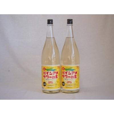 パインアメサワーの素 甘酸っぱくジューシーパイナップル果汁 25度 中野BC(和歌山県)1800ml×2