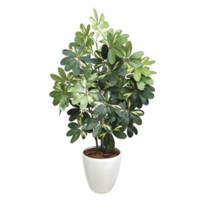 【送料無料】【ササガワ】 <人工観葉植物> シェフレラ Lサイズ 32-8719