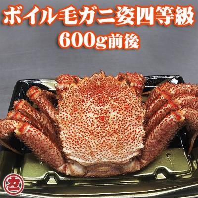 北海道産 毛がに姿 4特等級 600g前後 1尾入 ボイル 冷凍 全国送料無料
