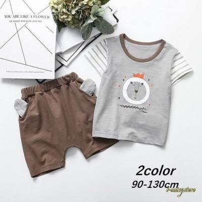 セットアップ 上下セット Tシャツ 子供用 キッズ 半袖 半ズボン 男の子 女の子 ハーフパンツ 動物プリント アニマルプリント ライオン かわいい
