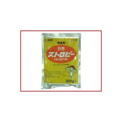 (農薬)ストロビードライフロアブル 250g(園芸用 殺菌剤)