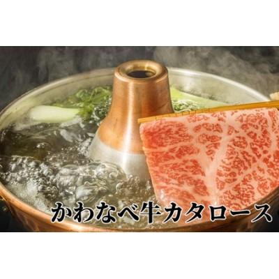 023-03 かわなべ牛カタロース450g