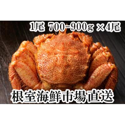 D-28003 根室海鮮市場<直送>ボイル毛がに700~900g×4尾