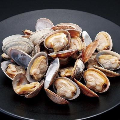 冷凍食品 業務用 殻付きあさり L500g (約31〜40個入) 21929 弁当 浅利 浅蜊 あさり 貝 肉厚 旬 砂抜 ボイル