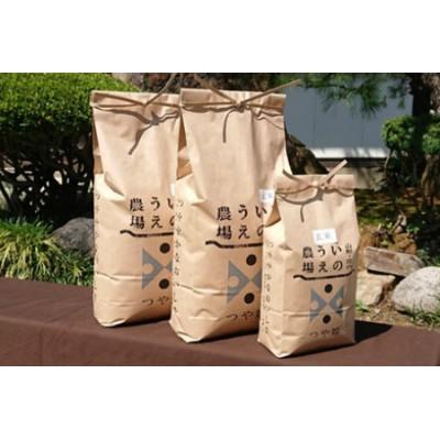B02-017 【令和2年産】井上農場の特別栽培米つや姫【玄米】12kg【定期便対応可(※必ず「配送」欄をご一読ください※)】