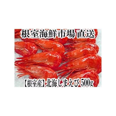 ふるさと納税 【北海道根室産】北海しまえび500g A-14120 北海道根室市