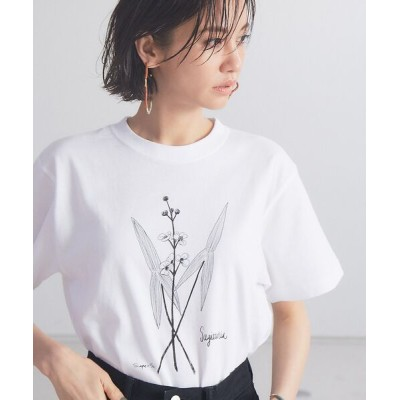 qualite/カリテ 【WEB・一部店舗限定】0501SagittariaTシャツ ホワイト F