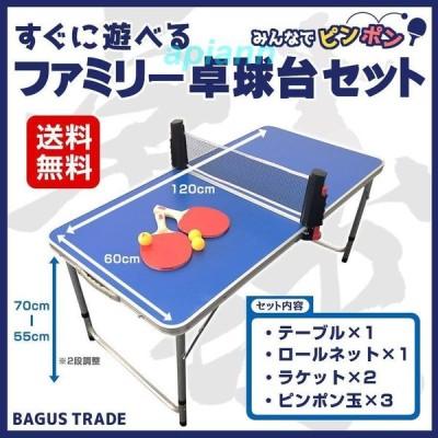 みんなでピンポン すぐに遊べる 折りたたみ式 ファミリー 卓球台セット (卓球台 ロールネット ラケット ピンポン玉)