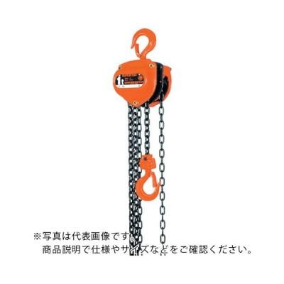 象印 スーパー100H級チェーンブロック7.5t・3.5m ( H-07535 ) 象印チェンブロック(株)