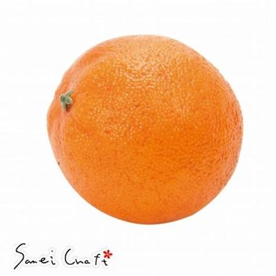 オレンジ  ORANGE  fv003530-zzz  【東京堂】   実もの 果物 野菜 パン 果物その他