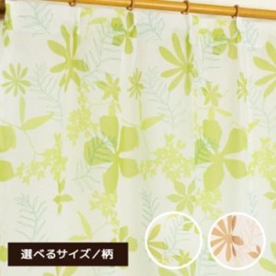 8種類 おしゃれ レースカーテン ボイル 花柄 ボタニカル モンステラ 100×133 100×176 100×198 洗える かわいい 子供部屋 リビング ア