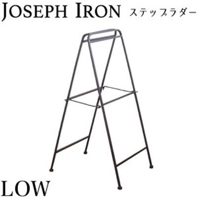 ジョセフアイアン ラダー ロータイプ 高さ78cm DTFF6220 アンティーク調 シンプル おしゃれ インテリア スパイス(代引不可)【送料無料】