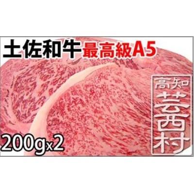 土佐和牛A5特選サーロイン&リブロースステーキ200g×2枚セット 牛肉