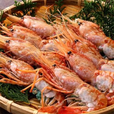 ボタンエビ 刺身用 大サイズ 牡丹海老 お寿司 海鮮丼 フライ 串焼き 天然 ぼたん海老 メス 約500g