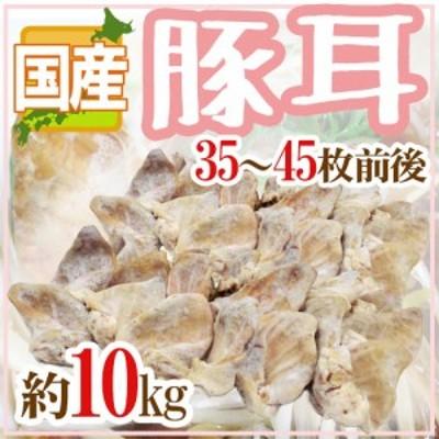 "国産 ""豚耳"" 35~45枚前後 約10kg ミミガー 送料無料"