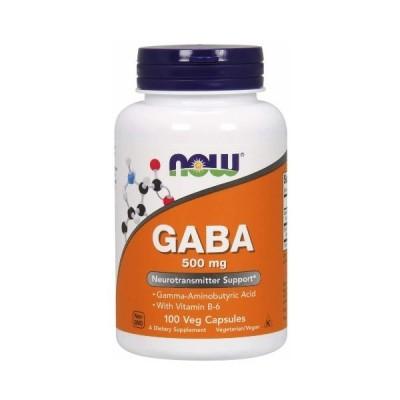 ナウフーズ ギャバ GABA + ビタミンB6 500mg 100ベジカプセル入り NOW FOODS社製