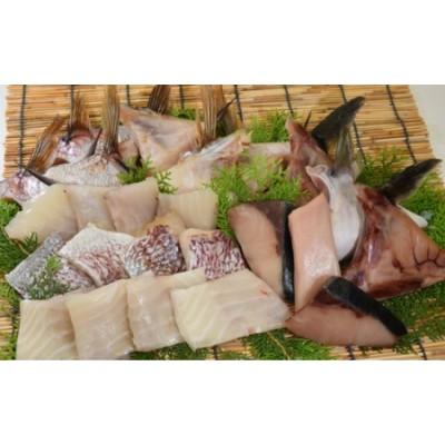 すくも湾のブリと鯛贅沢干物セット