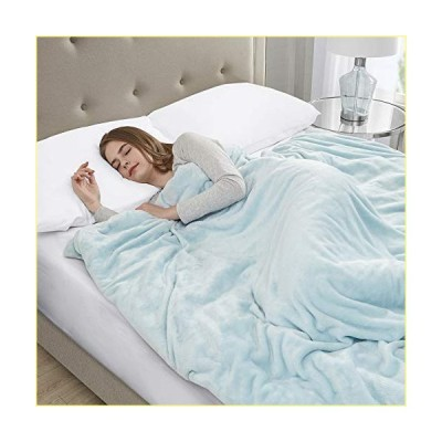 Sleep Philosophy Plush Weighted Ultra Soft and Cozy Warm Calming Heavy Blankets with Poly and Beads Filling, Zipper Removable Cover For Adul