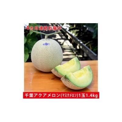 千葉アクアメロン1玉(1.4Kg)【4か月連続お届け】
