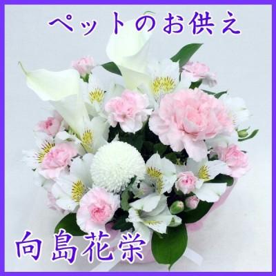 ペットの供花 カラーとピンクカーネーションの明るい感じのお供えアレンジメント