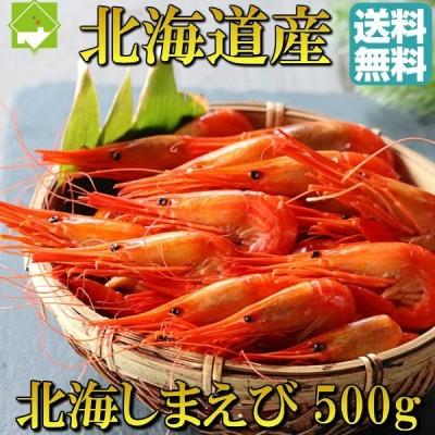 北海シマエビ 500g 送料無料 北海道産 Sサイズ しまえび 縞海老