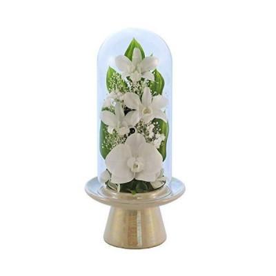 アートフォーシーズン (白系)胡蝶蘭Glass ホワイト プリザーブドフラワー