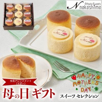 母の日 ギフト パティスリーナカシマ チーズケーキセット 【お届け期間:5/5〜5/9|指定不可】送料無料 DSS