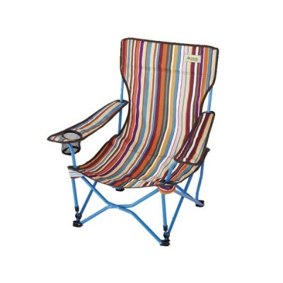ロゴス(LOGOS) キャンプ ストライプヒーリングチェア ポケットプラス 73173014 折りたたみ アウトドア 椅子 バーベキュー イス