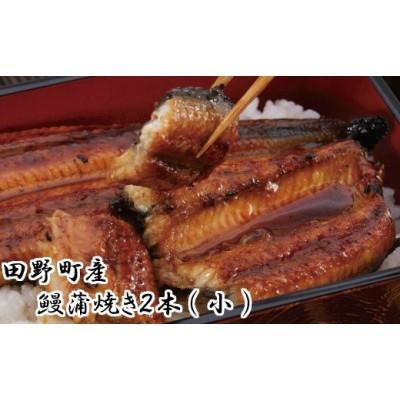 田野町産うなぎ蒲焼き2本(小)