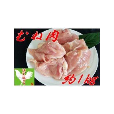 ふるさと納税 【Z8-006】はかた地どり むね肉 (約1kg) 福岡県飯塚市