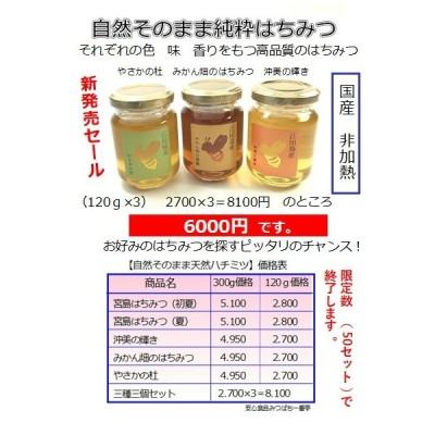 送料無料  広島県産はちみつ 沖美の輝き 120g 非加熱 国産 無添加 蜂蜜 ハチミツ ミツバチ みつばち 純粋 風邪 喉 のど かぜ