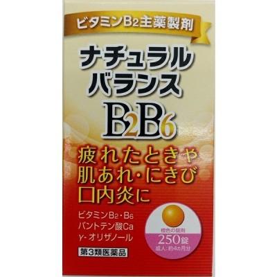 ナチュラルバランスBB250錠 チョコラBBプラスと同等の処方(第3類医薬品)