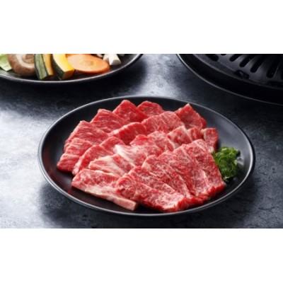 九州ファーム朝倉牛 赤身焼肉用 500g