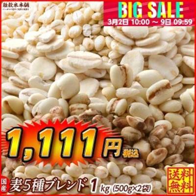 雑穀 麦 国産 麦5種ブレンド(丸麦/押麦/はだか麦/もち麦/はと麦) 1kg(500g×2袋) 送料無料 ダイエット食品 置き換えダイエット 雑穀米本